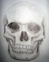 Skull Exercise