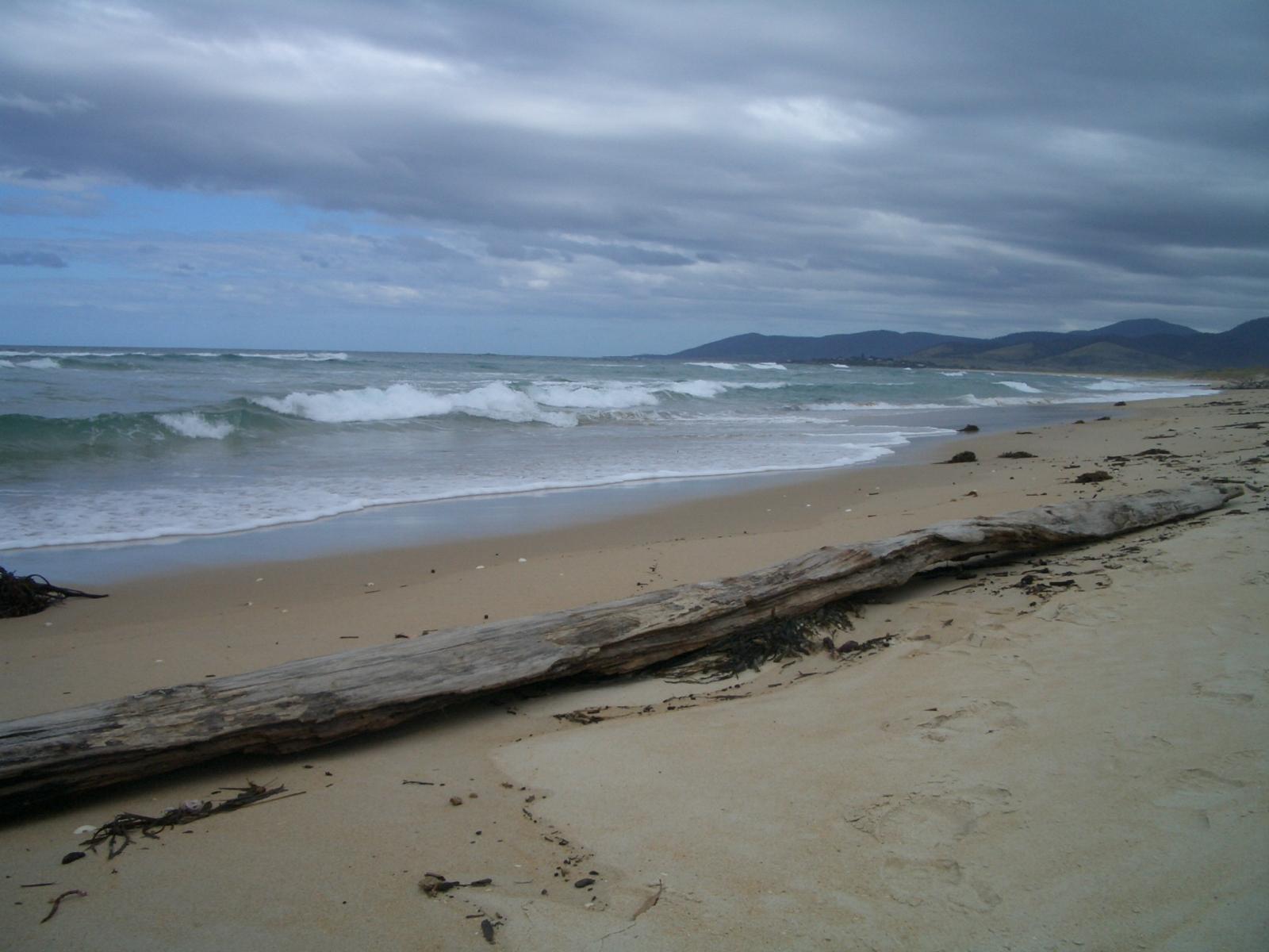 Tasmania - east coast beach