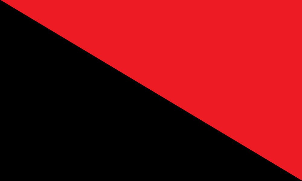 56bcd8a86ff9a_Black__Red_Flag.thumb.png.