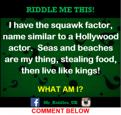 Created by Mr Riddles UK.png