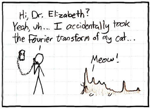 cartoon_fourier_cat-744180.jpg
